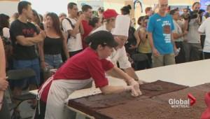 Giant McGill brownie
