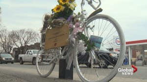 Truck driver not to blame for cyclist's death: Coroner's report