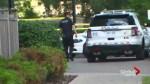 Peel police investigating Brampton homicide