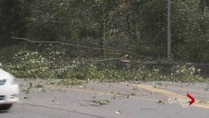 Woman hurt during windstorm vows to ride again