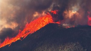 Behaviour of wildfires getting worse, becoming hotter, moving faster: analyst