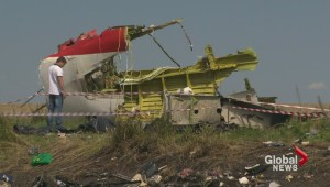 Flight MH17: More pressure on Putin
