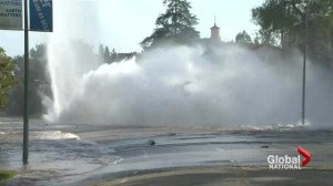 L.A. water main break