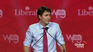 Liberals hold convention to vote on modernizing party