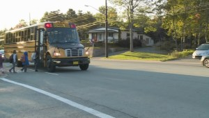 Motorists passing stopped school buses with red flashing lights