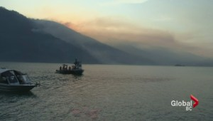 Search continues for missing man in Harrison Lake