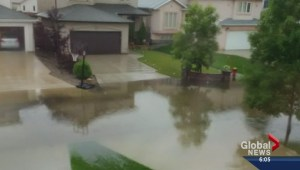 Winnipeggers clean up after storm Monday night