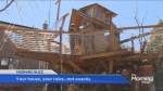 Boat-shaped treehouse in Toronto ordered to be taken down