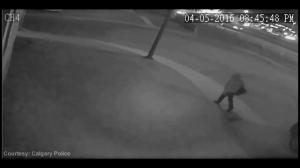 Calgary police release surveillance video in suspected arson case