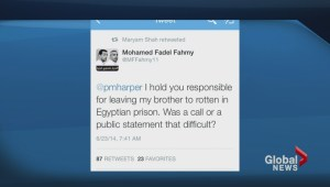 Australian journalist released from Egyptian prison