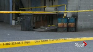 Police searching for more body parts after torso found outside meat shop