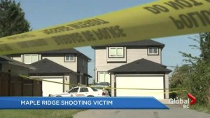 Maple Ridge Murder