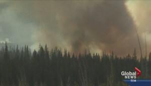 Wildfire potential in Alberta