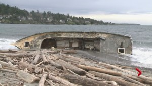 Saanich councillor floats idea to deal with derelict boats
