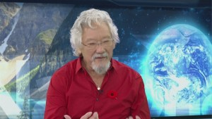 David Suzuki campaigns for Canadians' right to health environment