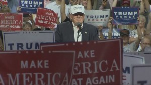 Donald Trump appeals to African American voters at rally in Michigan