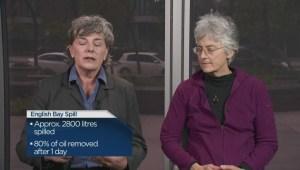 Impact of Exxon Valdez oil spill, 26 years later