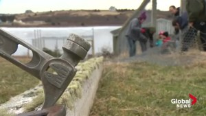 Hope for Wildlife works to rebuild following storm