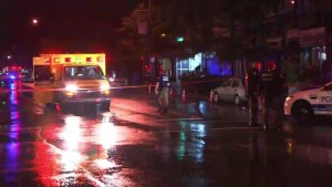 Police search for vehicle involved in hit-and-run