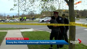 Boy, 6, dies after being hit by vehicle in Scarborough