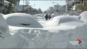 Buffalo buried in snow with more to come