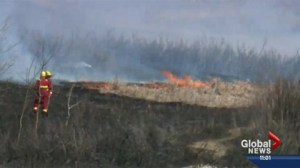 Firefighters continue to battle grassfires
