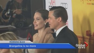 Is love dead? Brangelina calls it quits