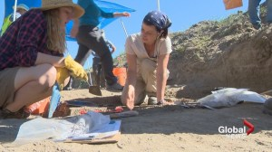 Archaeologists dig up new artifacts at historic Fort Macleod townsite