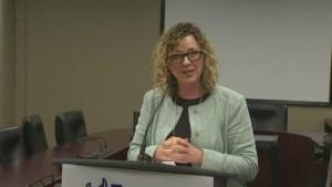 Toronto Public Works releases report on Gardiner Expressway