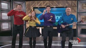 The Wiggles perform in the TMS Studio