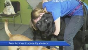 Vancouver entrepreneur launches online local pet care finder