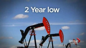 Investments take a hit with oil price drop