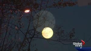 Is the 'supermoon' really that super?