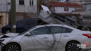 Pilot survives small plane crash onto residential street in New Jersey
