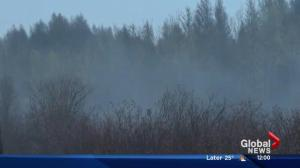 Dozens of Parkland County residents forced out of their homes due to wildfire
