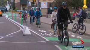 Edmontonians to adapt to new way of sharing roads with cyclists