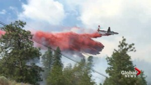 Monte Lake fire grows to 150 hectares