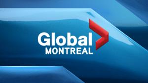 Secrets hidden beneath Montreal city hall?