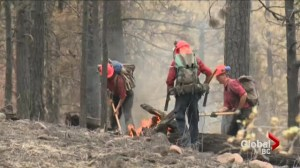 Cooler weather helps subdue BC wildfires