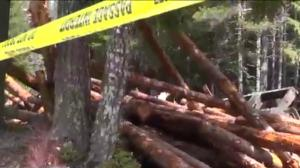3 dead, 2 injured in B.C. trail derailment