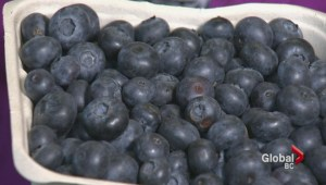 Nutrition: Health benefits of blueberries