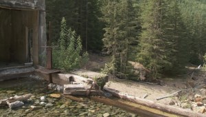 Dams at old Britannia mine to be repaired