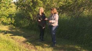 Catching birds at Oak Hammock Marsh on Global Winnipeg