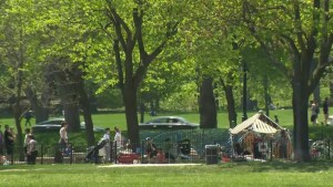 Suspect in custody after attempted kidnapping in Jeanne-Mance Park