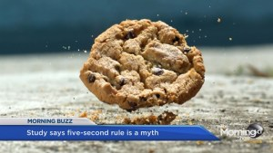 Five second rule is a lie: study