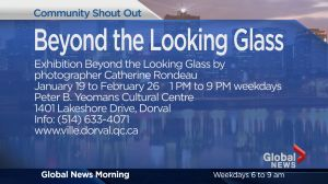 Community Events: Beyond the Looking Glass