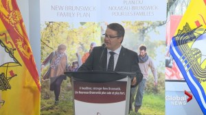 N.B. government unveils first part of Family Plan