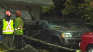 Tree narrowly misses North Vancouver house, crushes truck