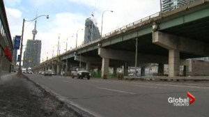 Gardiner hybrid or removal now up for debate