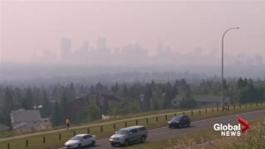 Smoky skies irritating for some, dangerous for others
